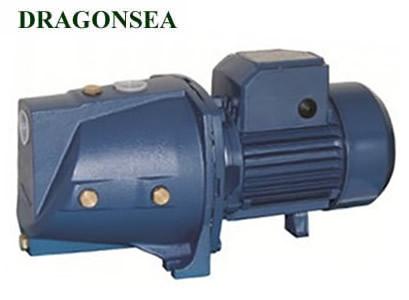 Máy bơm nước Dragonsea SGJW110