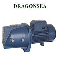 Máy bơm Dragonsea SGJW37