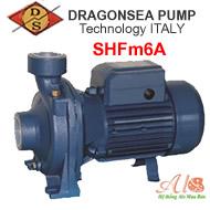 Máy bơm Dragosea SHFm6A (90-90)