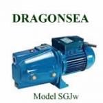 Máy bơm Dragonsea SGJW75